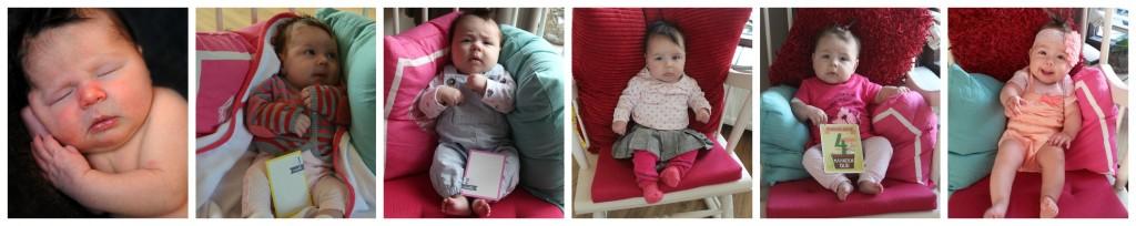 5 maanden collage