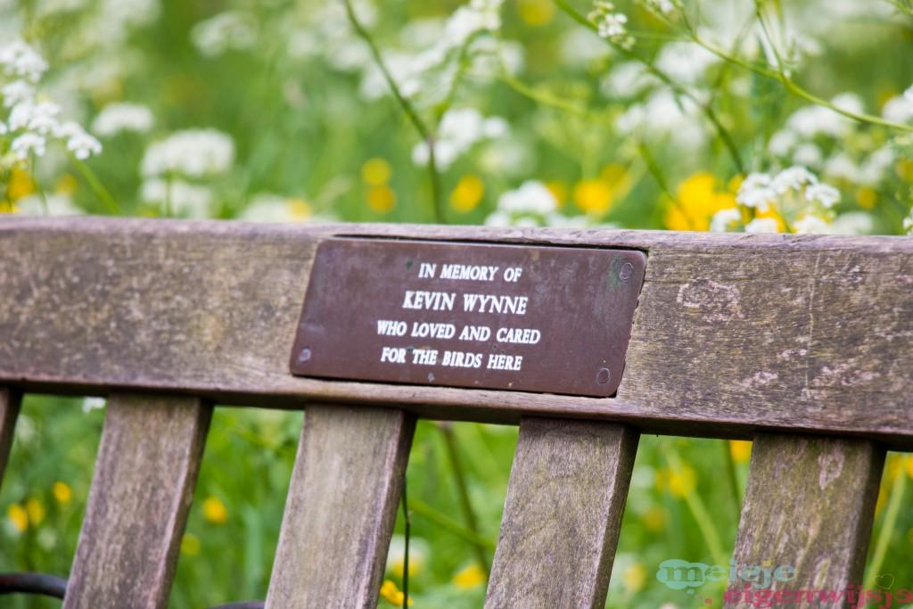 London Kensington parc