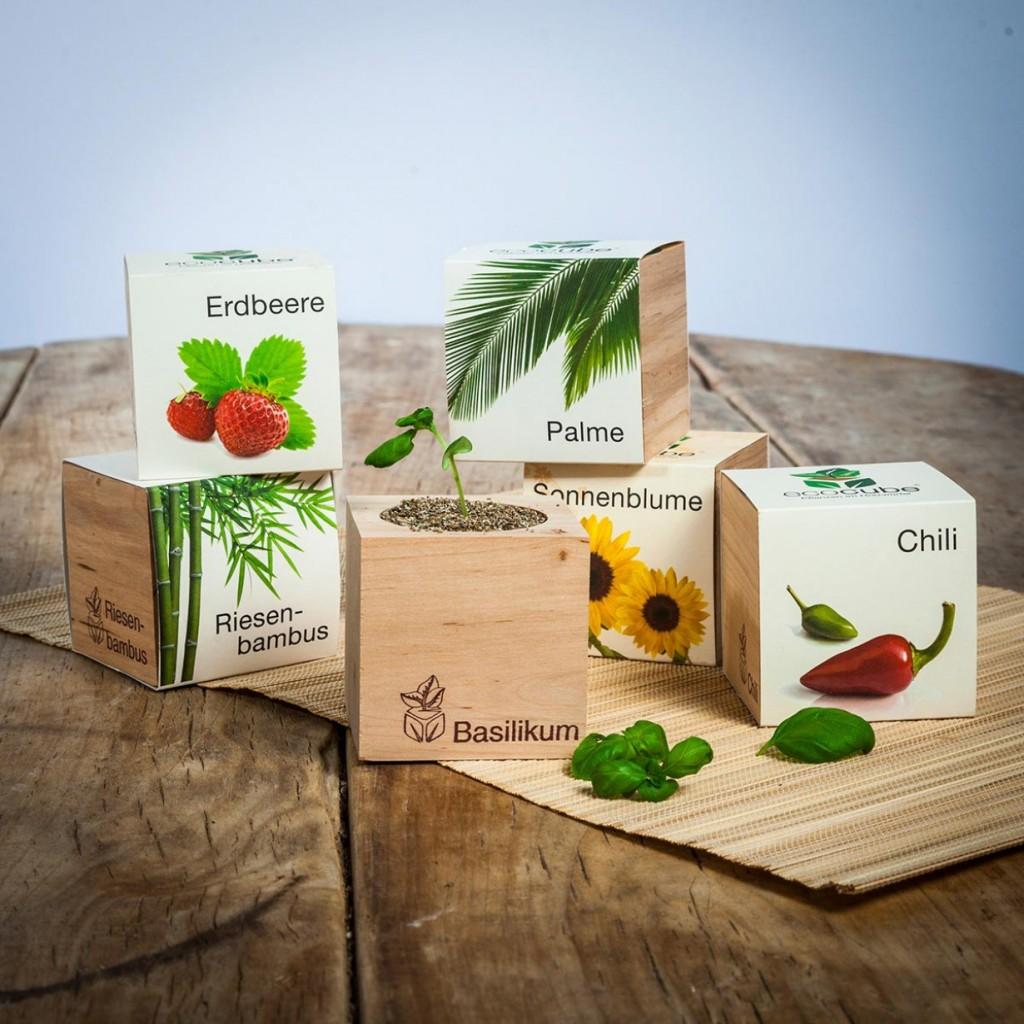 ecocube-planten-in-houtblokken-63f