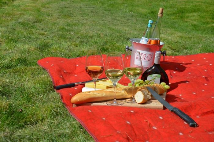 picnic-977866_1280
