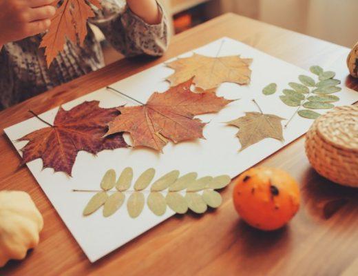 herfst knutsels