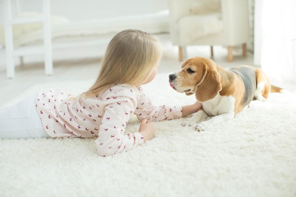 kinderen en huisdieren tips