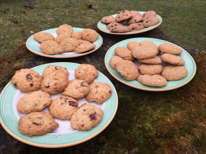 van eigen deeg koekjes