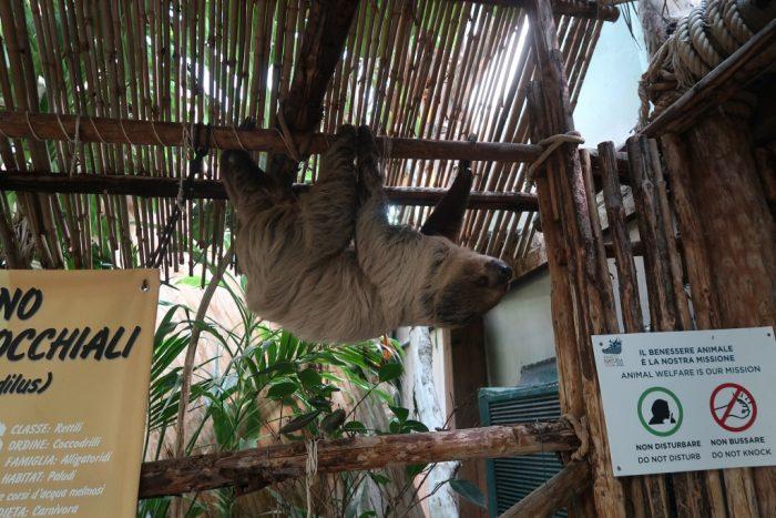 dierentuin parco natura viva
