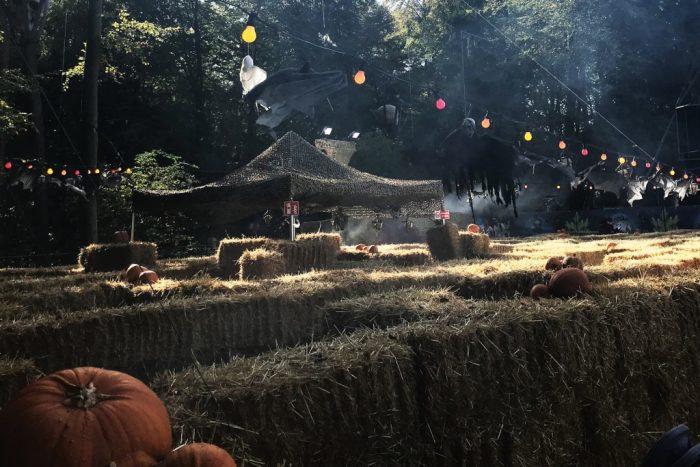 Halloween griezeldoolhof